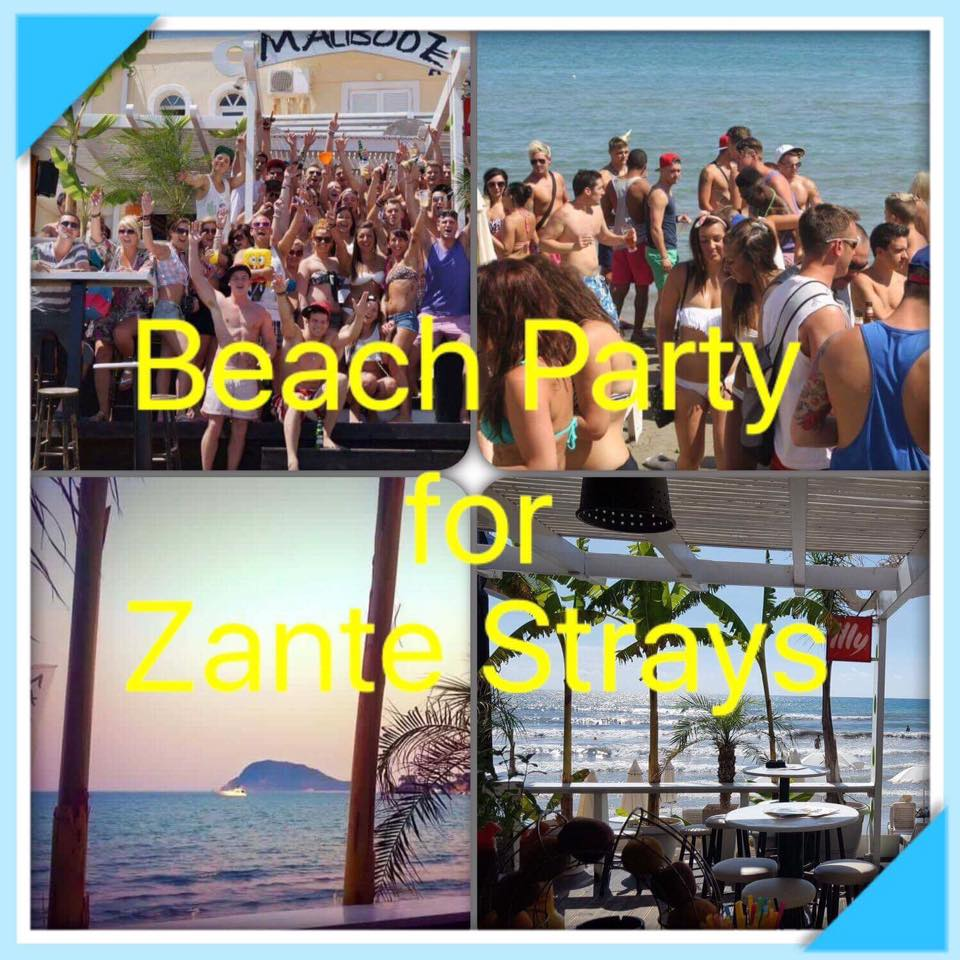 First beach party for Zante Strays